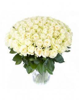 77 high elite white roses | Flowers to girlfriend