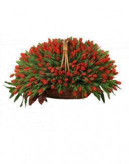 Basket 501 red tulips | 501 flowers