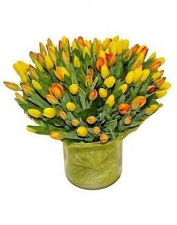 Bouquet 501 yellow tulips | 501 flowers
