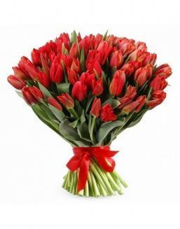 Bouquet 201 red tulips | Flowers to girlfriend